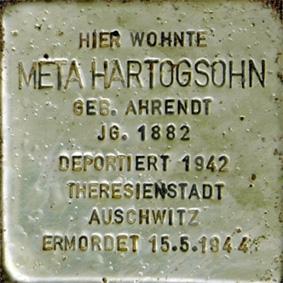 14_Meta Hartogsohn